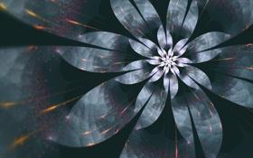 Картинка цветок, линии, свет, лепестки, спираль