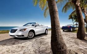 Обои песок, море, лето, вода, машины, пальма, пальмы