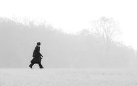 Картинка зима, поле, деревья, туман, силуэт, мужчина, ходьба