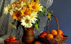 Обои герберы, кувшин, корзина, нектарин, натюрморт, шишка, абрикос