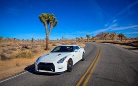 Обои GT-R, Дорога, Белый, Nissan, Капот, ниссан, Авто
