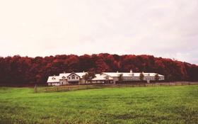 Картинка машина, небо, деревья, дом, красные