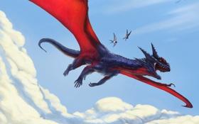 Обои облака, небо, арт, фэнтези, рисунок, птицы, дракон