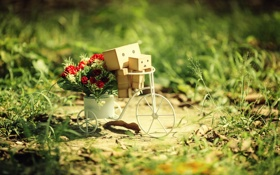 Обои цветы, велосипед, коробки, amazon