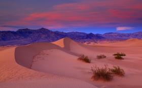 Обои США, Калифорния, небо, вечер, песок, пустыня, Долина Смерти