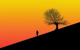 Картинка силуэты, человек, дерево