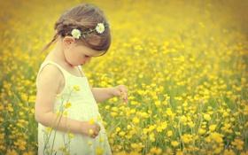 Картинка цветы, девочка, венок