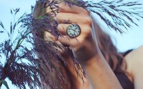 Картинка кольцо, часы, девушка, трава, рука