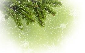 Обои снежинки, ветка, ёлка