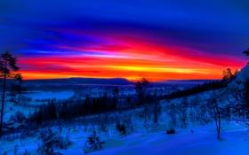 Обои зима, небо, облака, снег, деревья, склон, зарево