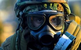 Обои противогаз, армия, радиация