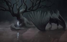 Обои темно, tree, Crow
