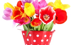 Обои тюльпаны, букет, лепестки, ведерко