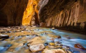 Обои река, камни, скалы, ущелье, США, Zion National Park, Utah