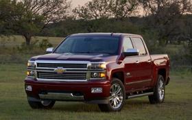 Обои Chevrolet, вид спереди, power, front, pickup, Crew Cab, Silverado