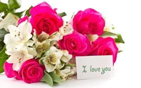 Обои цветы, розы, орхидеи, признание, карточка