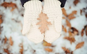 Обои зима, снег, листок, руки, белые, варежки, вязка