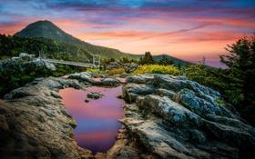 Картинка закат, лес, деревья, горы, мост, озеро