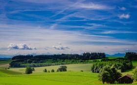 Обои облака, долина, трава, небо, поле, сарай, деревья