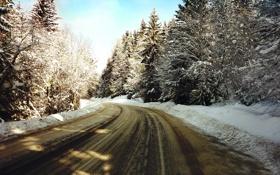 Обои зима, дорога, снег, деревья, природа, фото, дороги