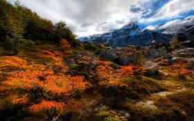 Обои облака, осень, Chile, камни., nature, деревья, горы