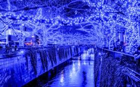 Обои огни, праздник, вечер, Япония, Токио