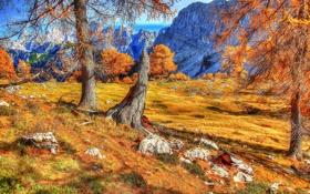 Обои осень, горы, скалы, Словения, slovenia, деревья.