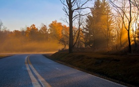Картинка дорога, осень, пейзаж, утро
