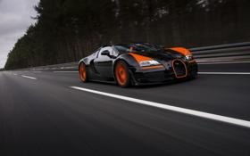 Обои дорога, car, лес, спорт, Бугатти, Bugatti, Вейрон