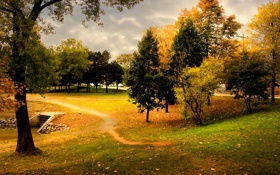 Картинка осень, небо, трава, деревья, тучи, природа, листва