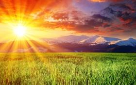 Картинка небо, солнце, облака, горы, луг, зелёный, красивое