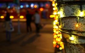 Обои макро, свет, огни, дерево, улица, огоньки, Новый Год