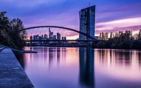 Картинка закат, небо, высотки, Германия, Deutschland, Франкфурт-на-Майне, деревья