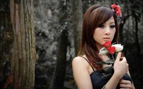 Картинка девушка, цветы, лицо, фото, руки, азиатка, mikako zhang kaijie