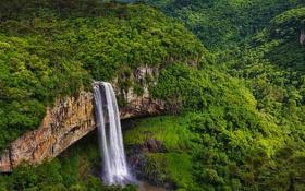 Картинка лес, Бразилия, штат Рио-Гранде-ду-Сул, скала, водопад Каракол
