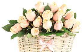 Картинка корзина, розы, бутоны, бантик