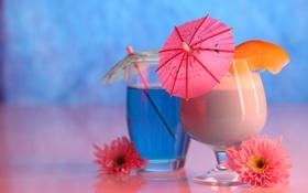 Картинка цветы, стакан, бокал, зонтики, коктейль, напиток, боке