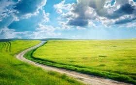 Картинка дорога, зелень, поле, трава, облака, борозды