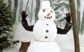 Обои зима, снег, человек, руки, снеговик
