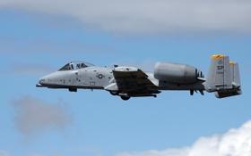 Картинка A10 Thunderbolt, самолёт, авиация, оружие