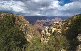 Обои пейзаж, горы, природа, горизонт, США, Невада