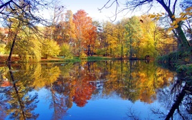 Картинка листья, пруд, деревья, скамейка, отражение, парк, осень