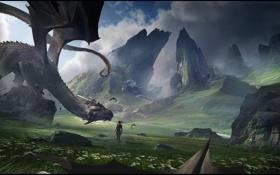 Картинка горы, дракон, Девушка, долина