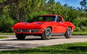 Картинка Corvette, Chevrolet, шевроле, Stingray, корветт, 1963