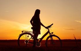 Обои поле, небо, девушка, закат, велосипед, фон, отдых