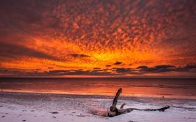 Картинка зима, пляж, небо, снег, океан, рассвет