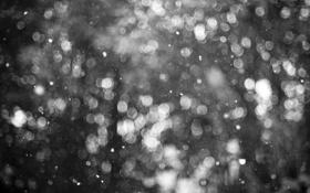 Картинка зима, снежинки, winter, snowflakes, b&w