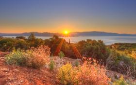 Картинка море, восход, побережье