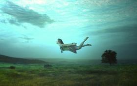 Обои море, поле, поверхность, дерево, холмы, тень, фея