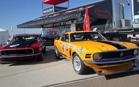 Обои Mustang, Ford, мустанг, Boss 302, Goodyear, форд, наклейки